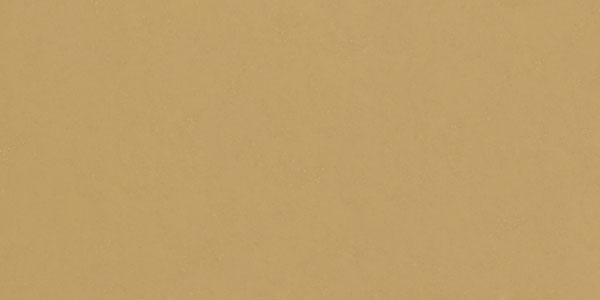 Tan Color Swatch Make the hair color brown