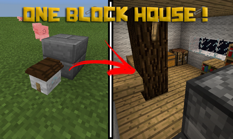 thumbnail - Smallest House In The World Minecraft