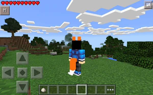 How To Make A Cat Tail On A Minecraft Skin