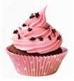 cupcake-franchise-opportunities-overland-park