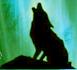 CYCLONES6's avatar
