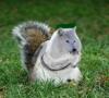 Explodo_nut's avatar