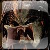 GlassToTheArson's avatar
