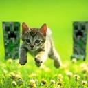 Havi's avatar