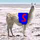 SuperLlama's avatar