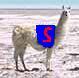 SuperLlama's avatar
