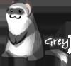 GreyD's avatar