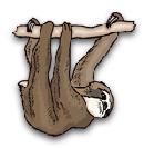 awoawo200's avatar