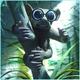 Galago's avatar