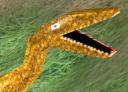 ben_g0's avatar