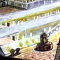 Sinkingship's avatar