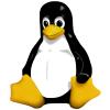 glassh0le's avatar