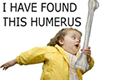 Hephaestus93's avatar
