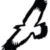 Benroyjam's avatar