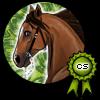 WolfGirlem's avatar