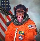Tpman's avatar