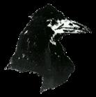 Dysgalt's avatar