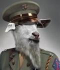 deps's avatar