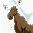 DaMooseinator's avatar