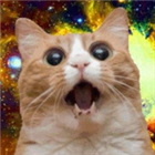 BIGIR0NNUTZ's avatar