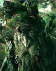 trectuse's avatar