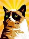 wiki101wiki's avatar