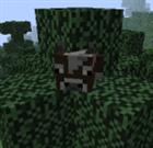 earthshope's avatar