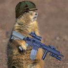 preeriakoer's avatar