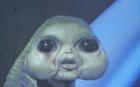 magicmethyl's avatar