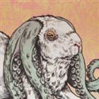 Nirgalbunny's avatar