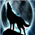 xX13LoneWolf13Xx's avatar