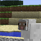 Piplupful's avatar