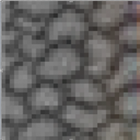Thematrican's avatar
