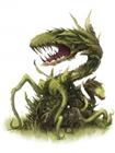 MokahTGS's avatar