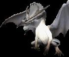 Suchomimus12's avatar