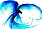 Tyferno's avatar