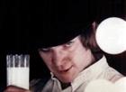 FourWingedLuckyChicken's avatar