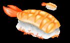 Sillylittlesushi's avatar