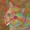 Tylenol's avatar