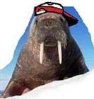 scud24's avatar