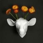 maudima's avatar