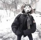 DgtheGreat's avatar