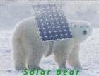 Solarbear's avatar