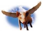 porkersthepig's avatar