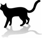 TropicalCat's avatar
