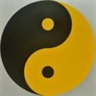 YINNY's avatar