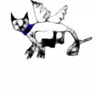 hahadude's avatar