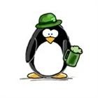 AIrishPenguin's avatar
