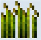 alphayocom's avatar
