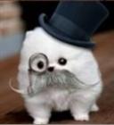 Beu50's avatar